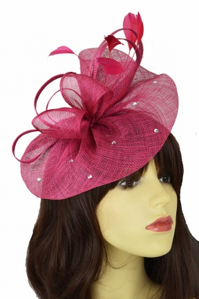 615769d05db06 Raspberry Hat Fascinator with Hairband and Sparkle